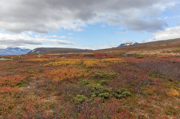 Parque nacional sarek na lapônia, vista da montanha