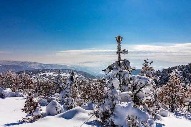 Parque nacional soguksu, inverno, neve, floresta, kizilcahamam, ancara