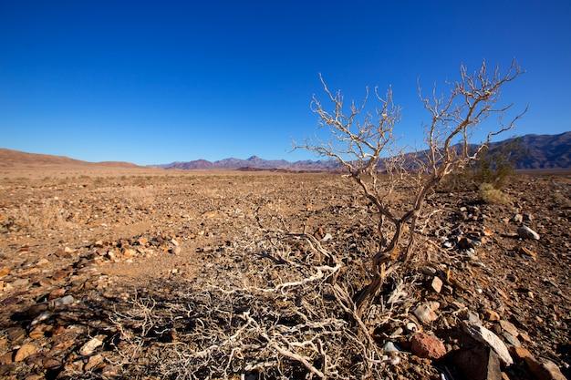 Parque nacional vale morte, califórnia, corkscrew, pico