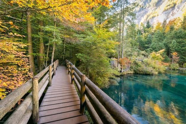 Parque natural blausee ou lago azul em kandersteg, suíça, cor autum com água limpa