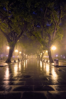 Parque popular de guangzhou com neblina à noite na china