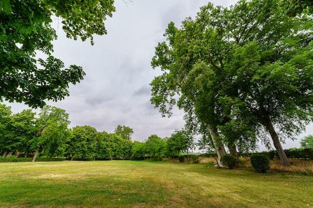Parque público com árvores enormes e prados verdes para descansar e caminhar