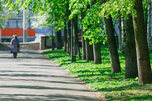 Parque público em dia de sol, passagem para exercício forrado