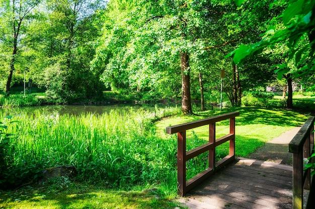 Parque verde da primavera parque da cidade com árvores de ponte de grama verde e lago com patos paisagem da primavera