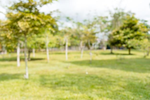 Parque verde de natureza turva com bokeh de fundo de luz do sol