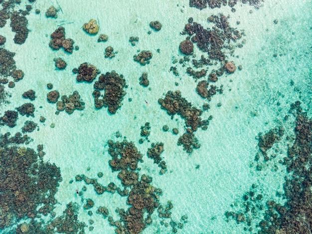 Parte aérea superior abaixo pessoas snorkeling no recife de coral mar do caribe tropical