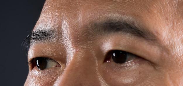 Parte do corpo olho bola sobrancelha pele close-up