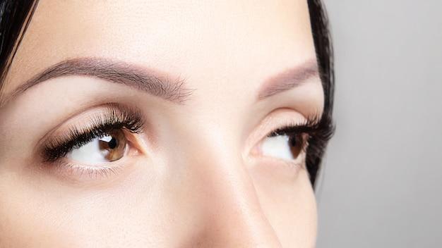 Parte do rosto de uma mulher com cílios castanhos compridos e microblading. retrato de beleza feminina. extensões de cílios, cuidados com as sobrancelhas, conceito de beleza e spa