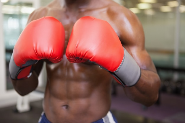 Parte média do boxer musculoso sem camisa