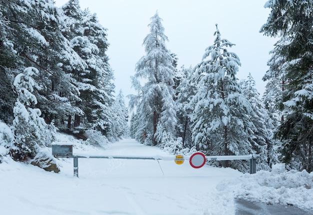 Passagem de montanha de inverno com estrada coberta de neve e árvores com neve (áustria, tirol)