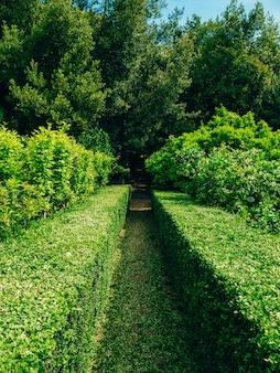 Passagem e pavilhão pavimentados com vegetação exuberante no arboreto em trsteno