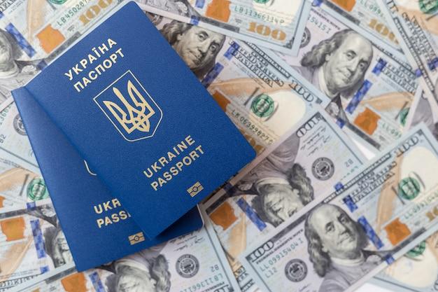 Passaporte azul em dinheiro.