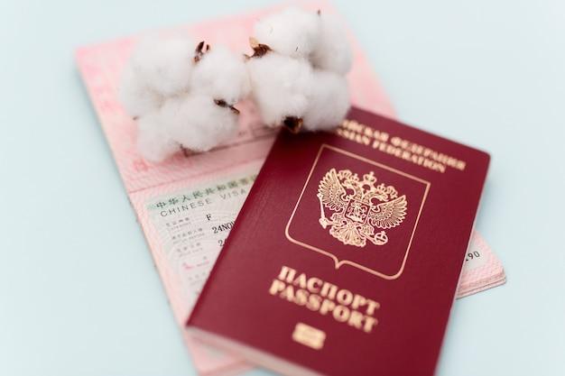 Passaporte para viajar para o exterior, visto, documentação, centro de vistos, permissão de saída, fundo azul, porto na mão