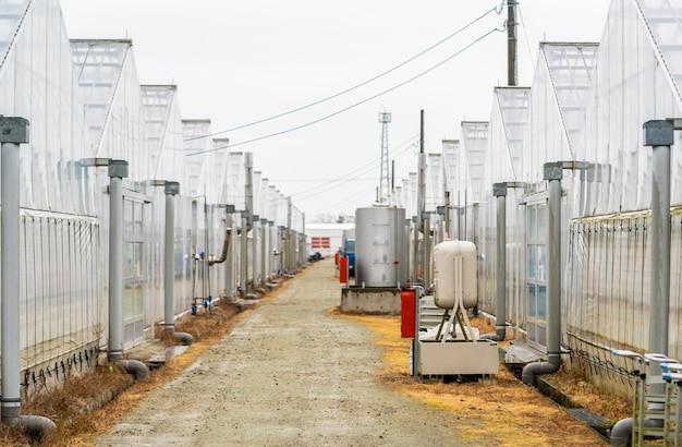Passarela de fazenda orgânica hidropônica com efeito de estufa