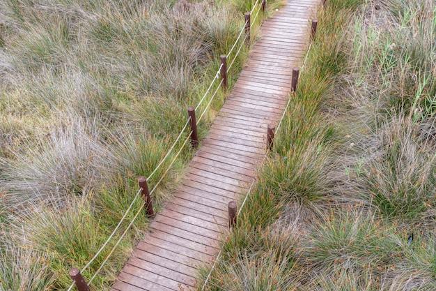 Passarela de madeira na grama