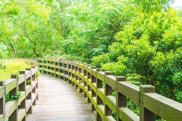 Passarela de madeira no jardim em cheonjeyeon falls, jeju island