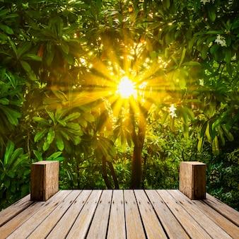 Passarela de madeira no jardim natural