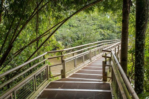 Passarela no parque nacional do iguaçu - argentina