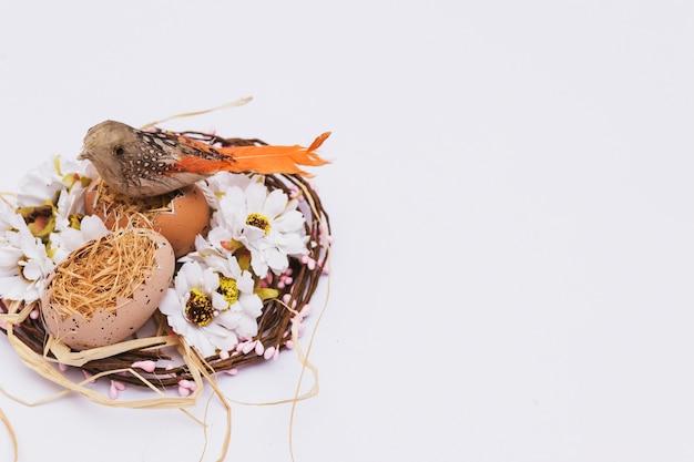 Pássaro em ovos perto de flores