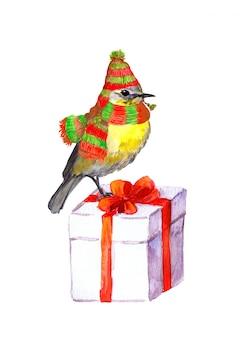 Pássaro no inverno chapéu, cachecol.