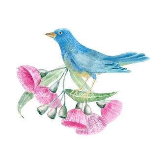 Pássaro tropical em aquarela em flores de eucalipto