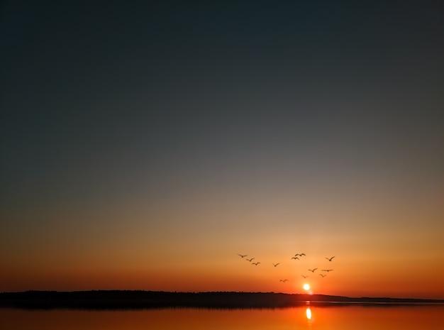 Pássaros voando no contexto do pôr do sol sobre o rio