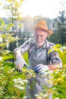 Passatempo. homem aposentado alegre e simpático sorrindo enquanto trabalhava no jardim