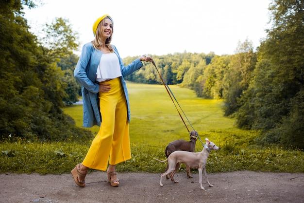 Passear com cães, cuidar de animais. galgo italiano da raça do cão