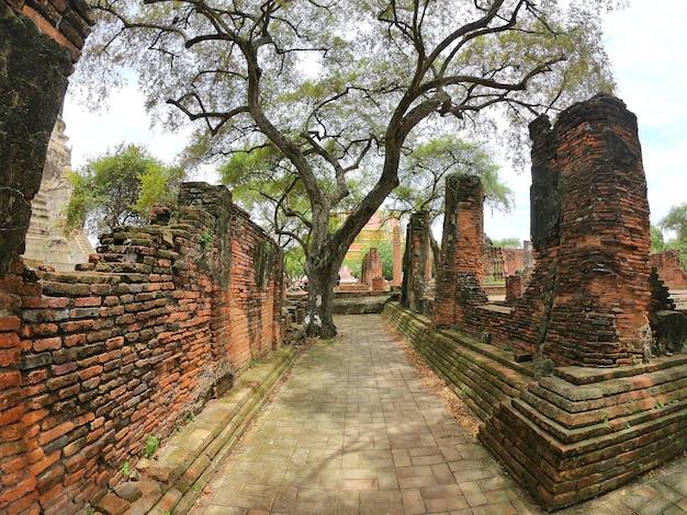 Passeio e parede em wat phra si sanphet, phra nakhon si ayutthaya, tailândia. budismo.