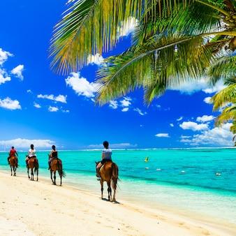 Passeios a cavalo na praia tropical. ilha maurícia