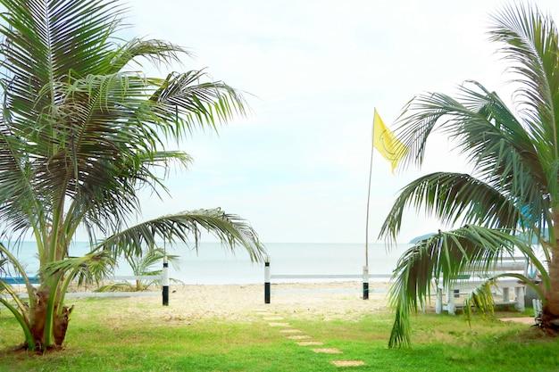 Passo da passarela para caminhar até a costa, areia marrom e mar de água azul tem grama gree e palmeira ao lado