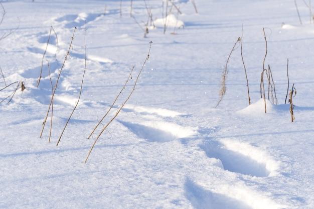 Passos na neve profunda. conceito de resfriamento ou aquecimento global
