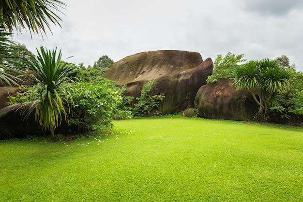 Pasto verde arquivado e jardim, paisagem grama verde no parque natural