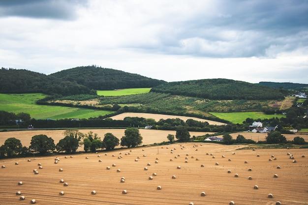 Pastos verdes da zona rural da irlanda com fardos de feno e árvores