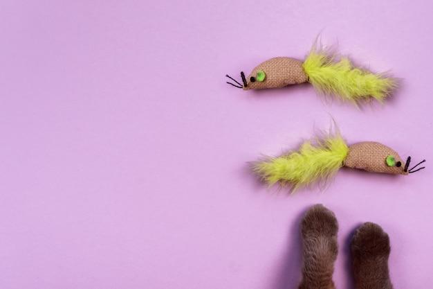 Patas de gato e mouses de brinquedo em violeta.
