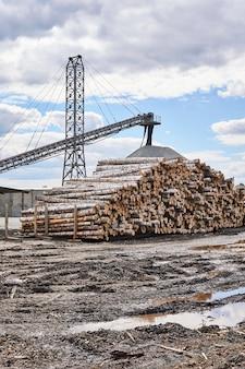 Pátio de carga da indústria de marcenaria com toras e esteiras de carregamento