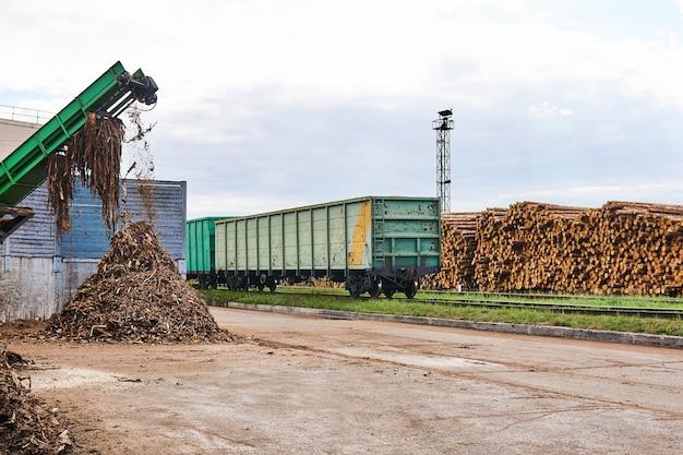 Pátio de madeira com pilhas de toras, vagões de carga abertos e picador de cascas