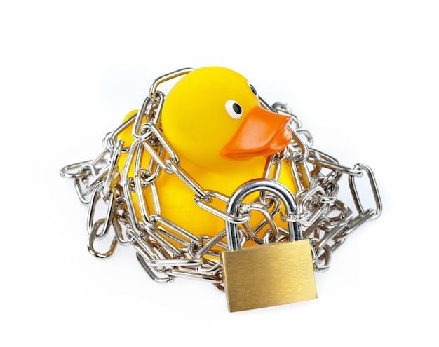 Pato de borracha amarelo com corrente e cadeado