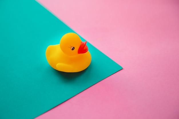 Pato de borracha amarelo isolado em azul e rosa.