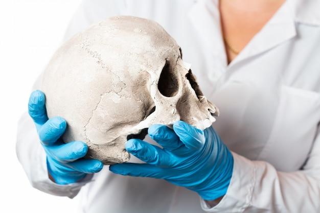 Patologista forense. doutor em luvas de borracha, segurando o crânio humano.