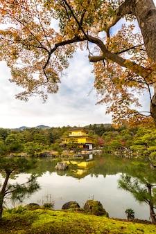 Pavilhão dourado kinkakuji