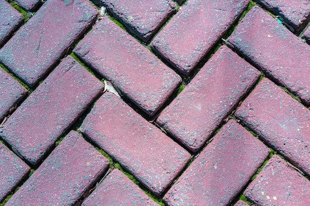 Pavimentadoras de tijolos ao ar livre estabelecidas no padrão de espinha de peixe