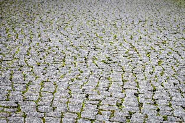 Pavimento de paralelepípedos áspero com musgo