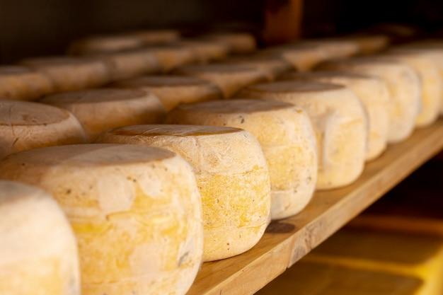 Pedaços de close-up de queijo maduro