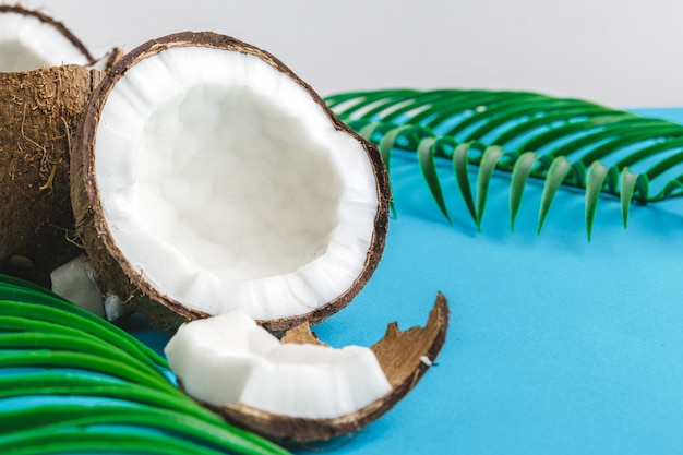 Pedaços de coco danificados com casca close-up