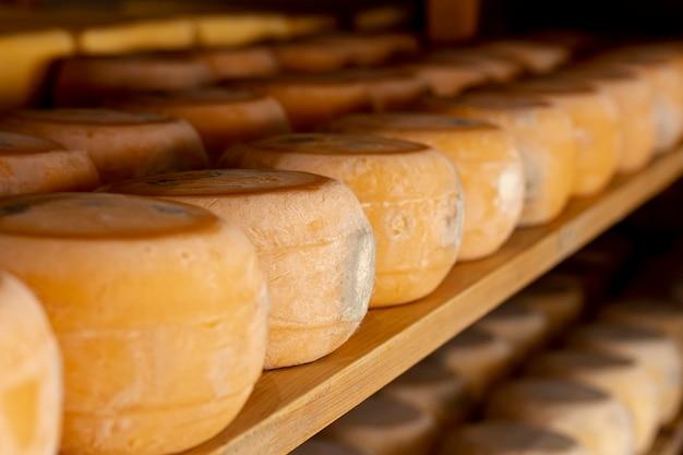 Pedaços de queijo delicioso com close-up