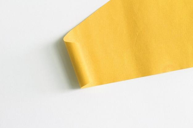 Pedaços de textura de papel rasgado e têm espaço de cópia para design em seu trabalho.