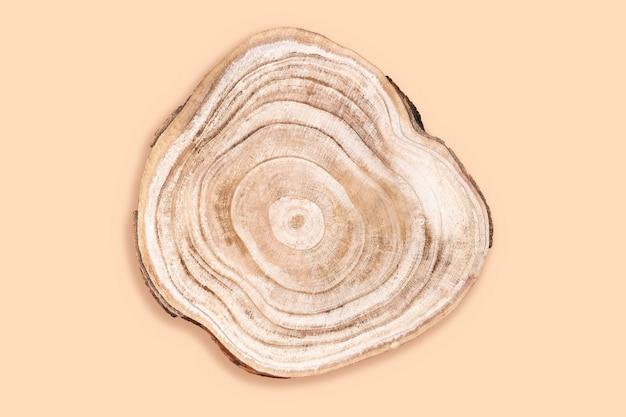 Pedestal ecológico orgânico natural. corte transversal de madeira isolado em bege, estúdio tiro. vitrine de prêmios para produtos cosméticos. tronco de árvore mostrando anéis de crescimento. maquete de anúncio de produto