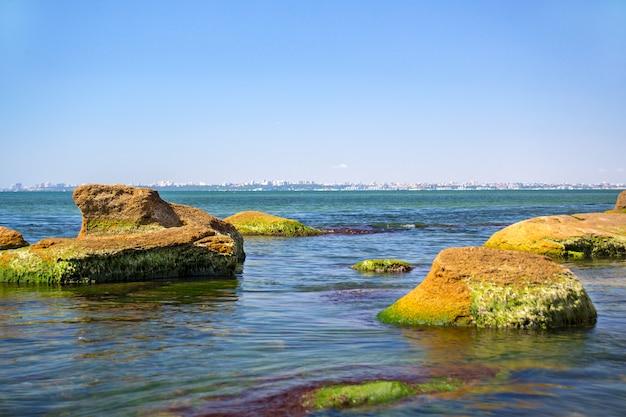Pedra coberta de algas verdes no mar com o céu azul como pano de fundo