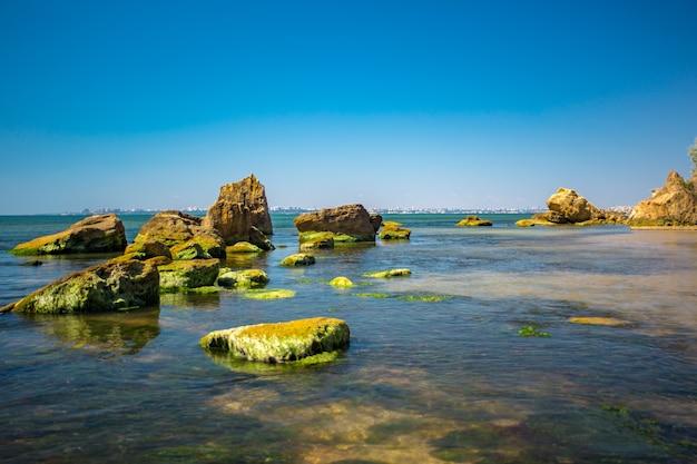 Pedra costeira com algas verdes. pedra coberta com algas verdes